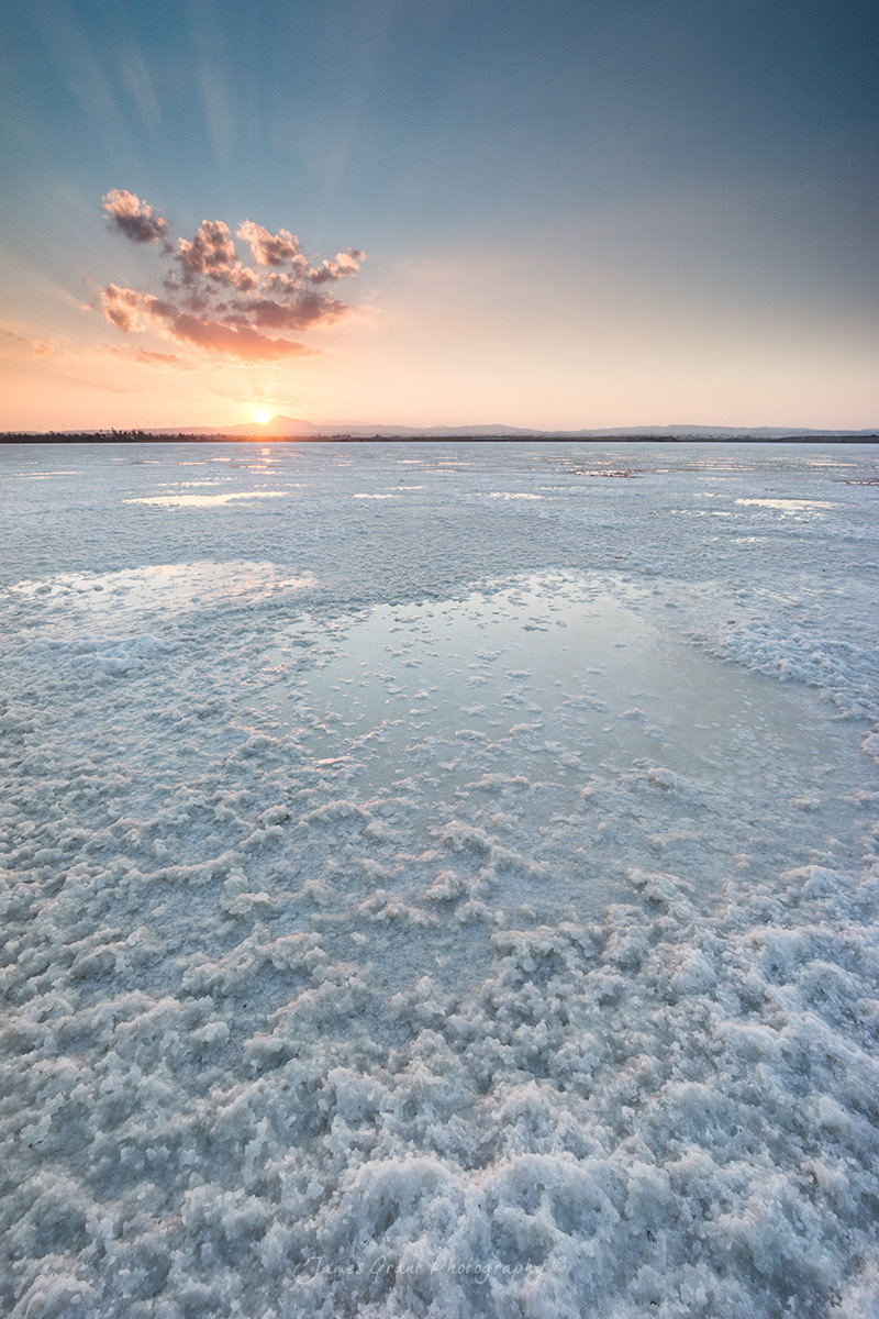 Larnaca Salt Lake Portrait - Cyprus