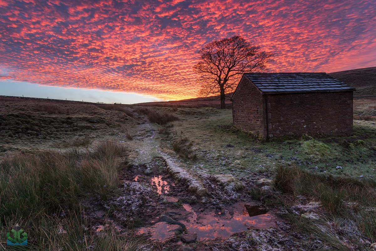 Wildboarclough Barn Sunrise - Peak District Landscape Photography