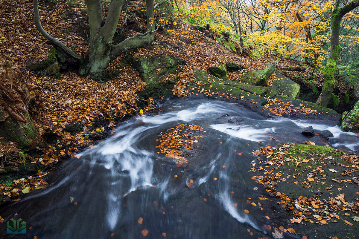 Bentley Brook - Peak District Landscape Photography