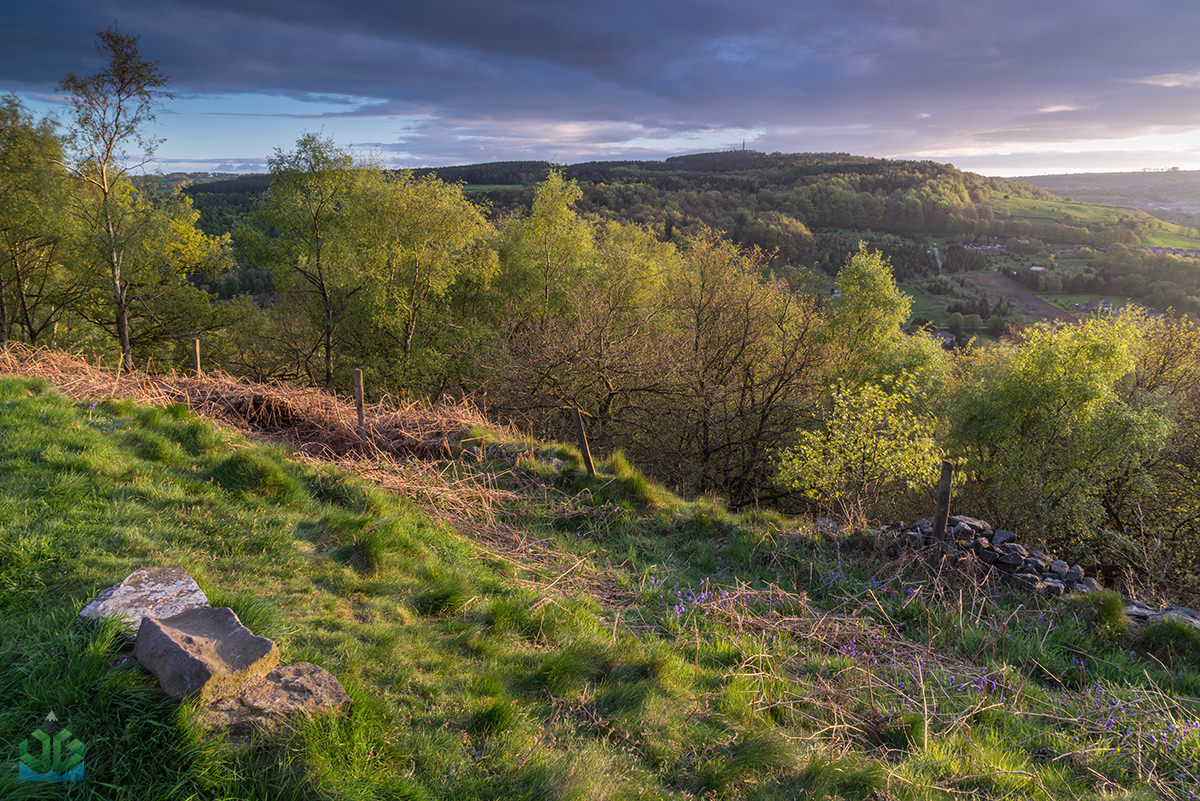 Bow Wood Sunset Side Light  - Peak District Landscape Photography