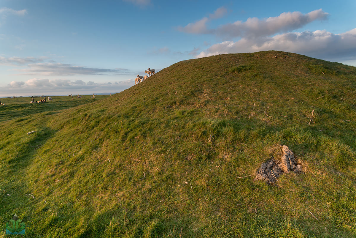 Gib Hill Barrow - Peak District Photography