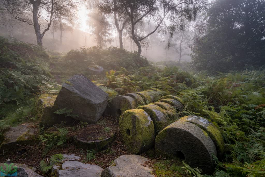 Bolehill Millstones in the Mist - Peak District Photography