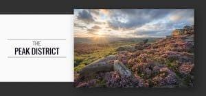 Peak District Heather Photography Workshop
