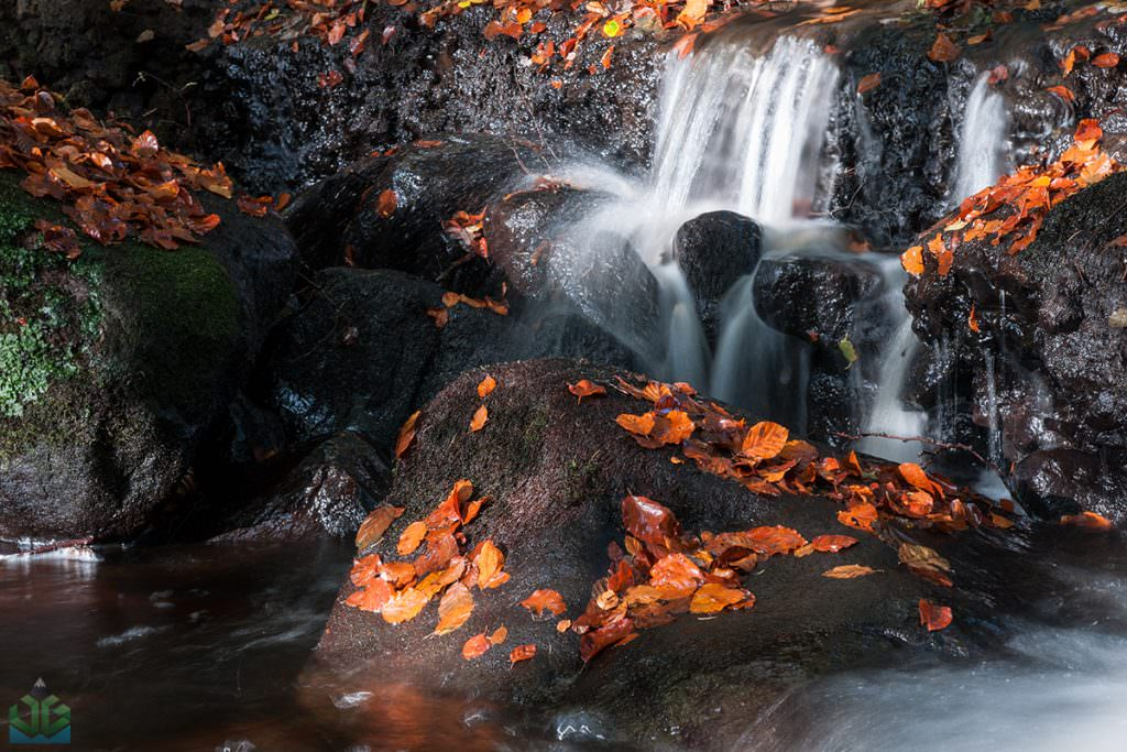 Padley Gorge Cascade - Autumn in the Peak District