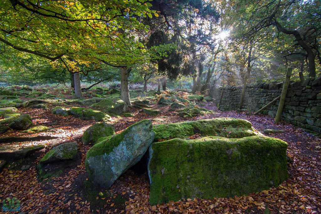 Padley Gorge - Autumn in the Peak District