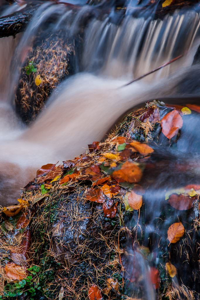 Wyming Brook Stream - Autumn in the Peak District