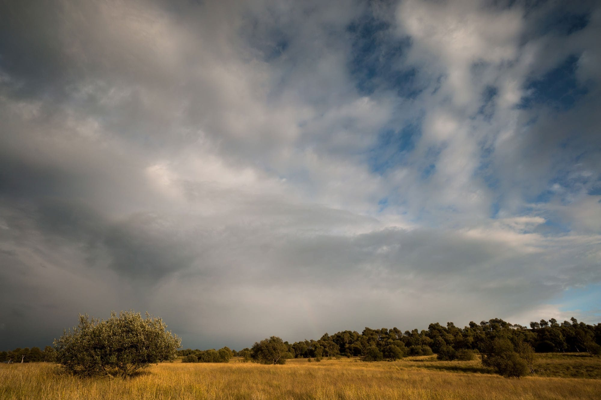 Birchen Edge Stormy Skies - Gritstone Edges Peak District Photography Workshop
