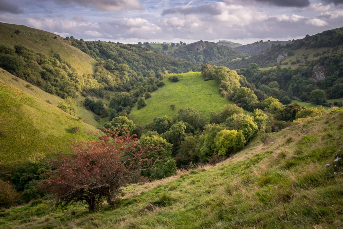 Ecton Hill to Thors Cave - Peak District Photography
