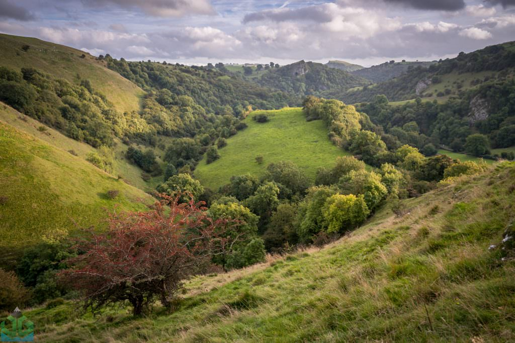 Ecton Hill to Thor's Cave - Peak District Photography