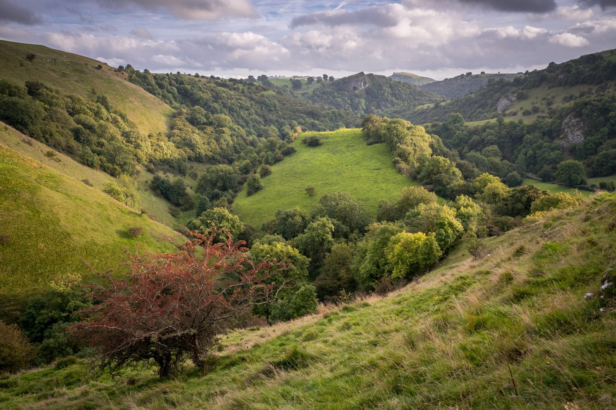 Ecton Hill to Thors Cave - South Peak District Limestone Photography Workshop