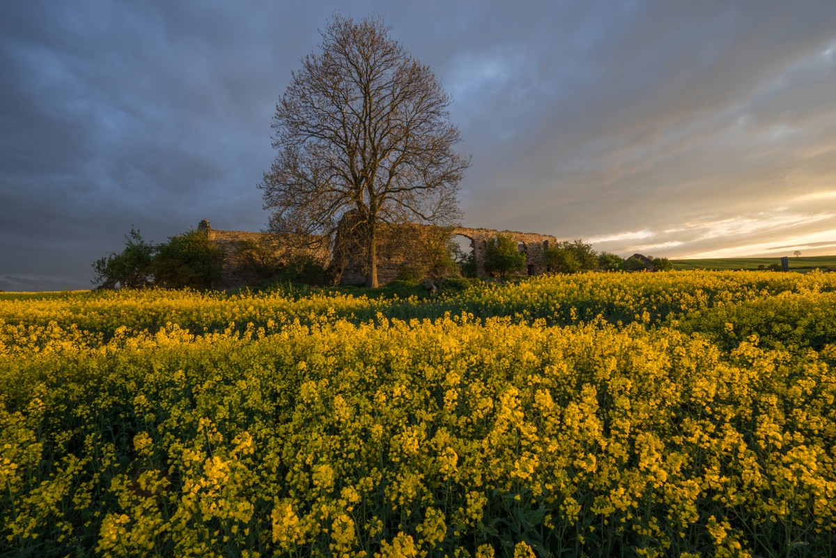 Lodge Farm Sunset - Derbyshire Photography