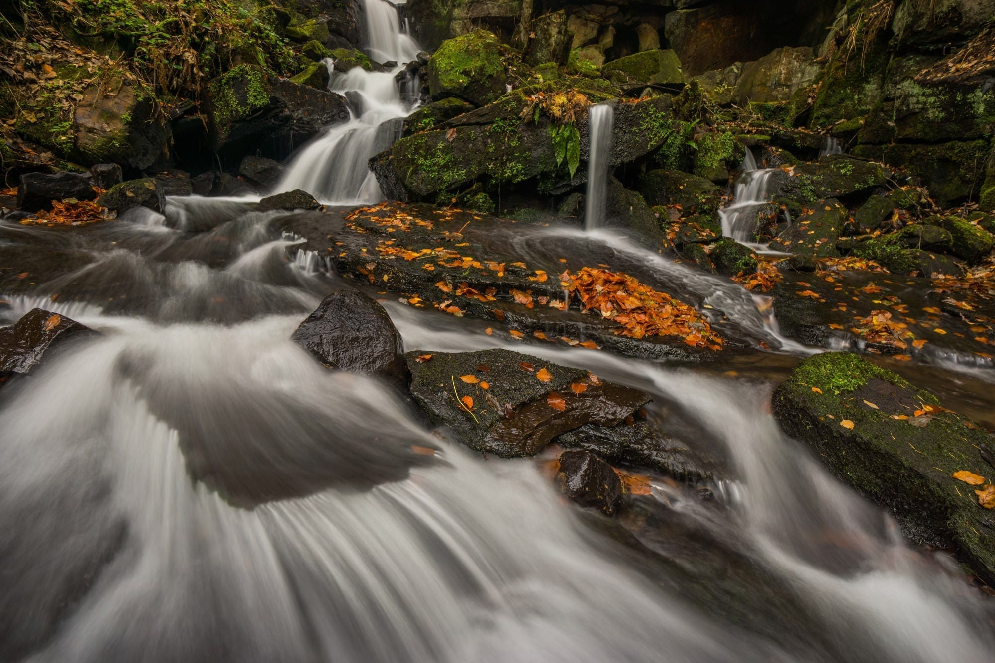 Lumsdale Waterfall in Autumn - Derbyshire Photography