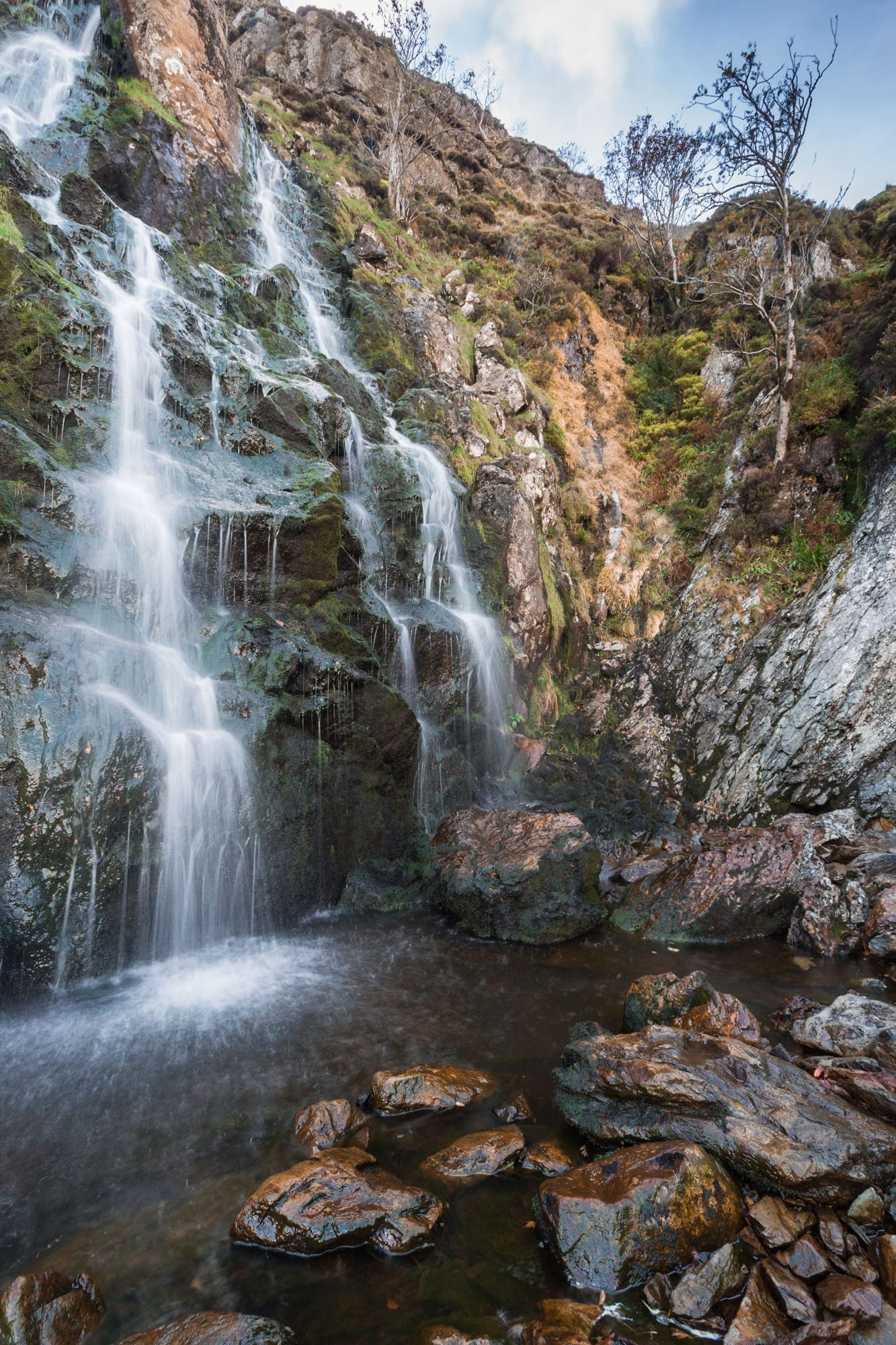 Moss Force - Lake District Photography