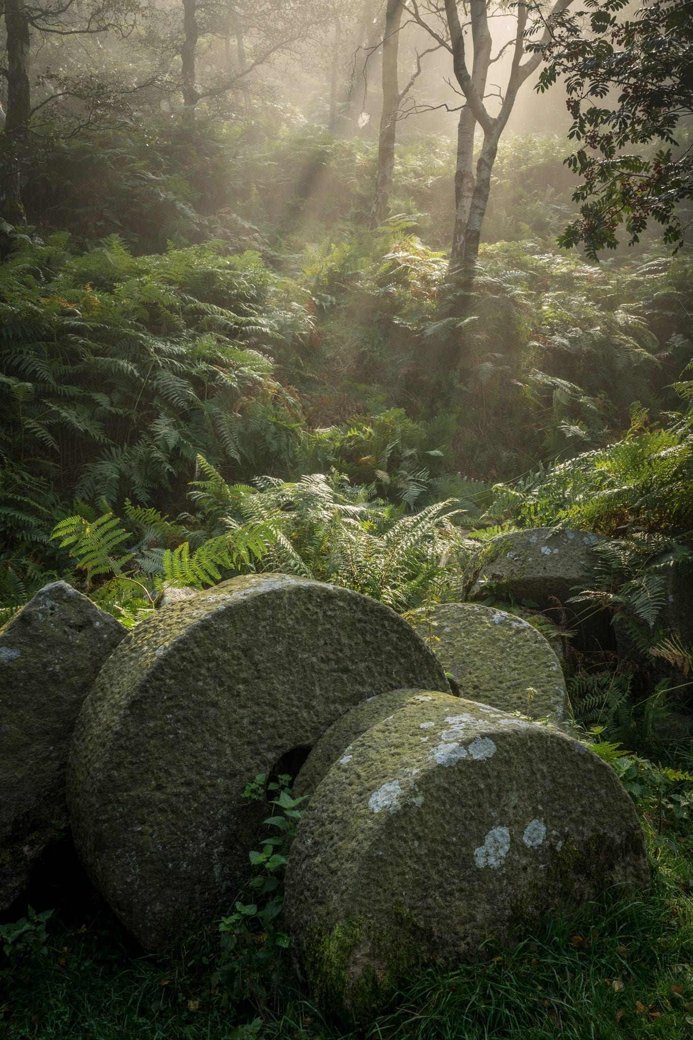 Bolehill Millstones in the Mist - Autumn in the Peak District Photography Workshop