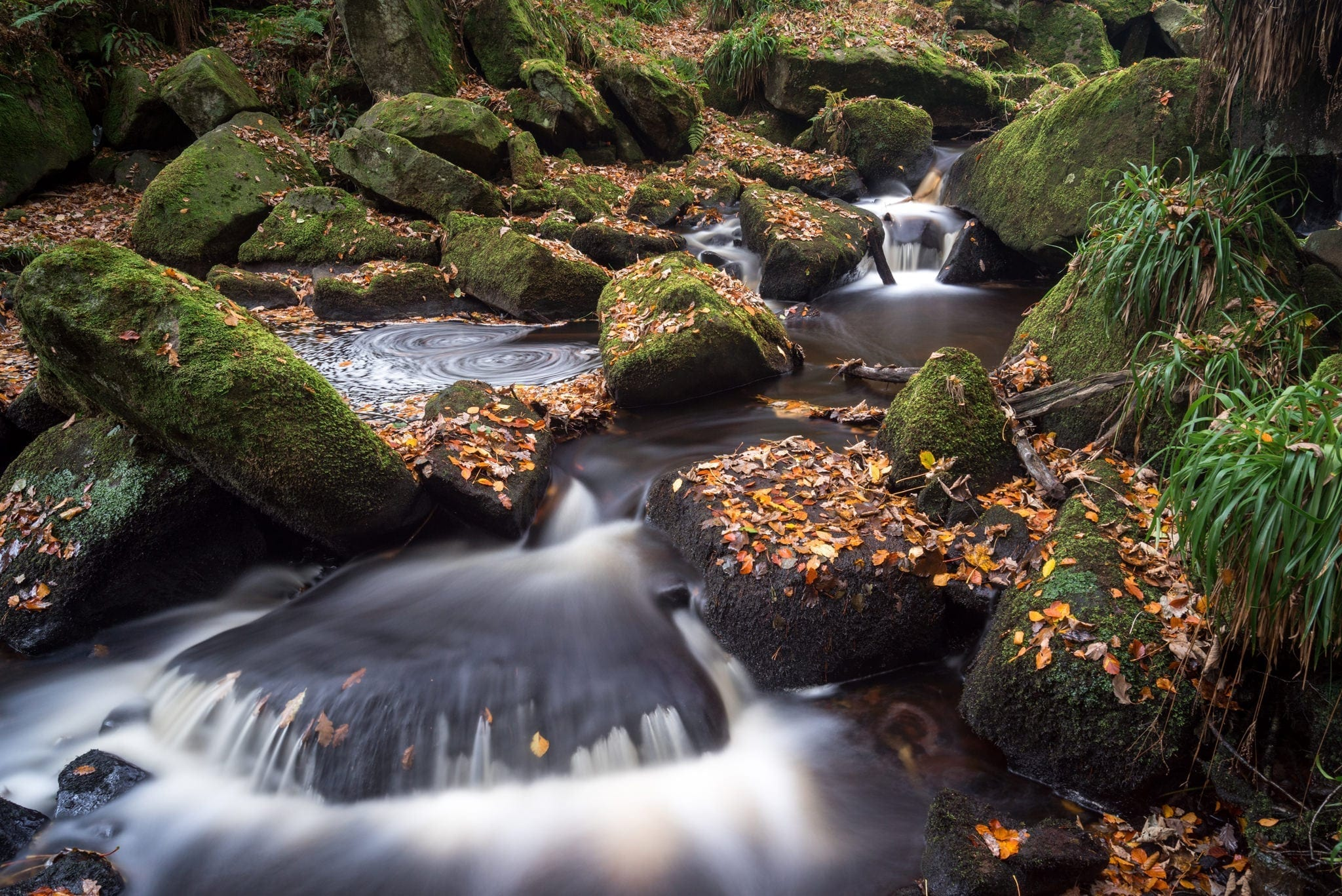Padley Gorge Autumn - Autumn in the Peak District Photography Workshop