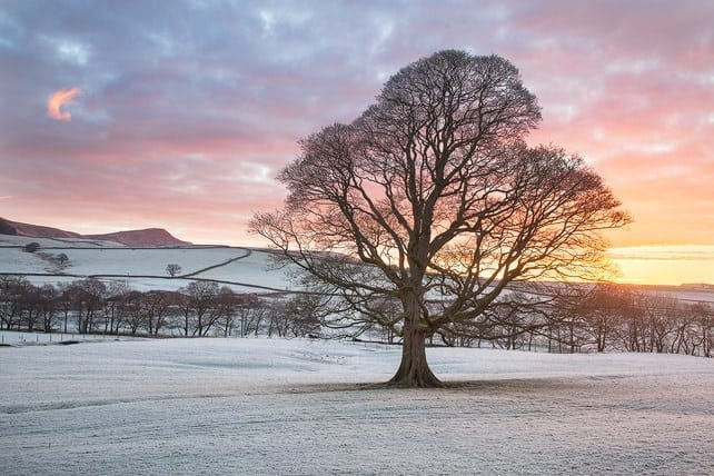 Winter in the Yorkshire Dales Photography Workshop