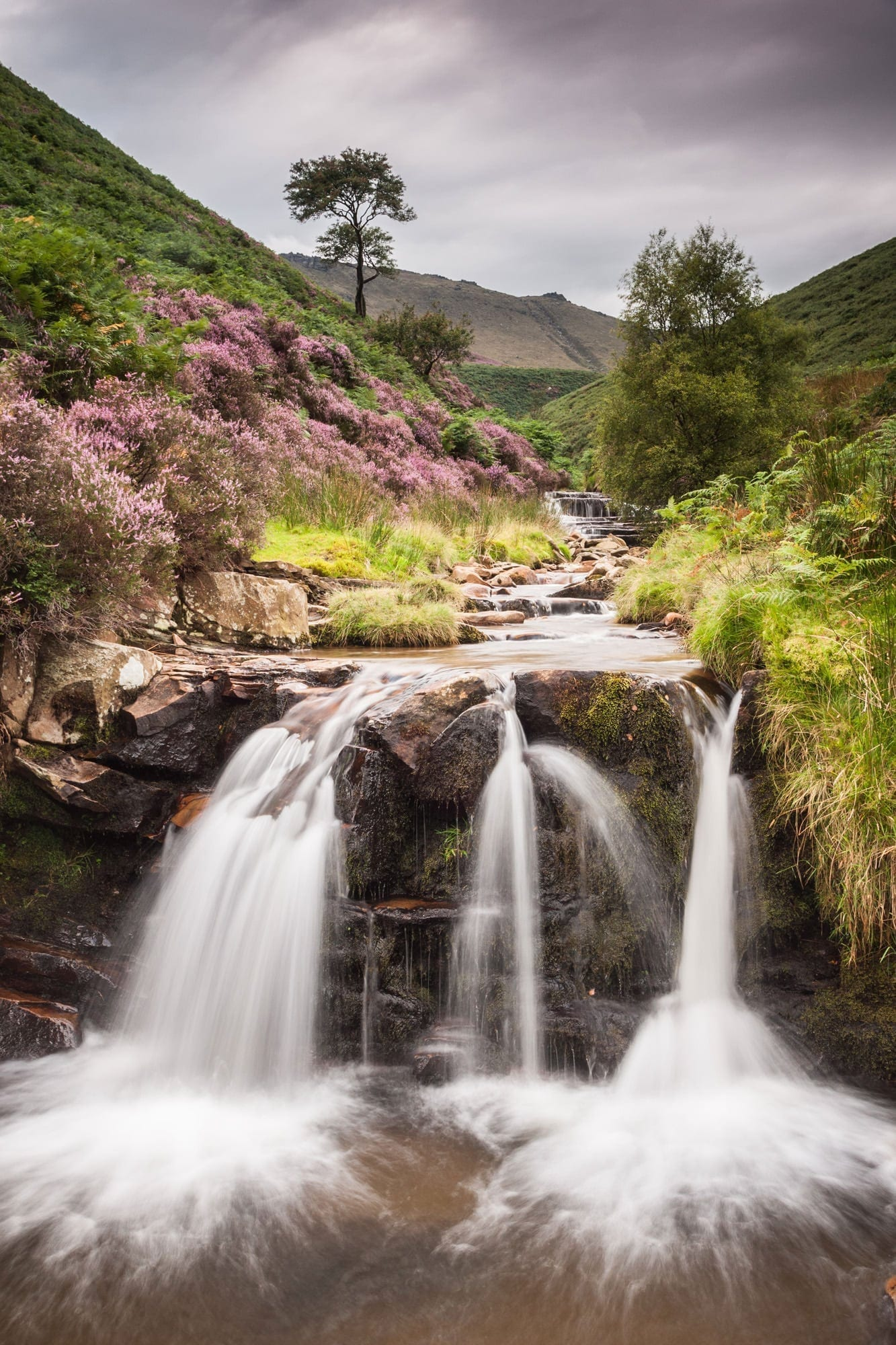Trident Waterfall - Fair Brook - Heather in the Peak District Photography Workshop