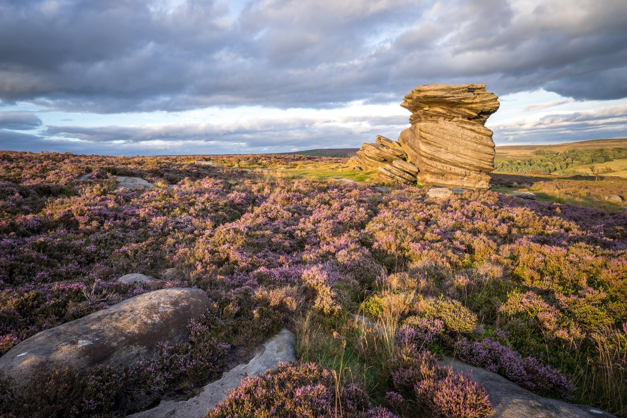 Mother Cap Sunset - Heather in the Peak District Photography Workshop