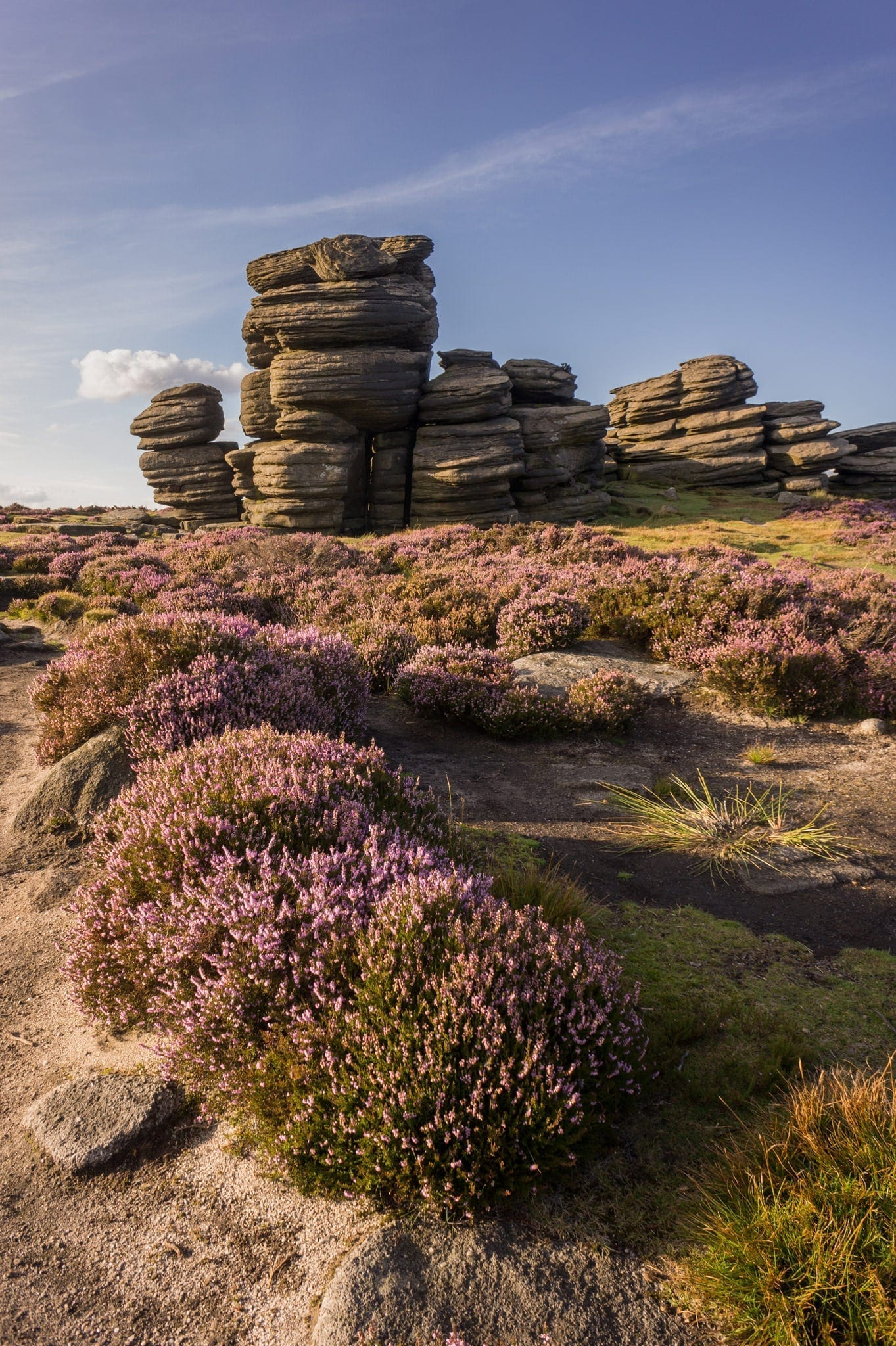 Wheel Stones - Heather in the Peak District Photography Workshop