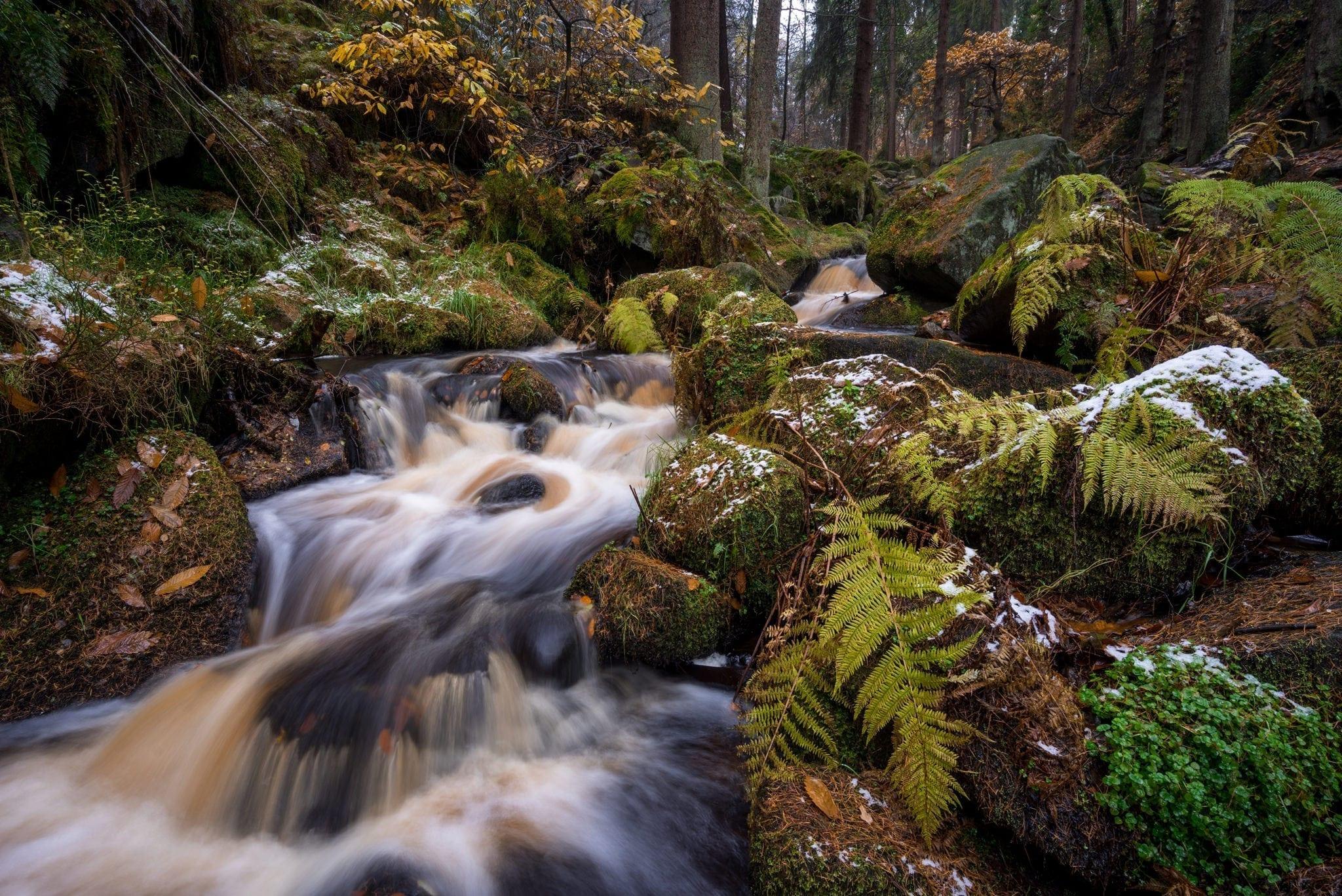 Wyming Brook Autumn Snow - Autumn in the Peak District Photography Workshop